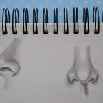 A peek into my sketchbook: drawing noses