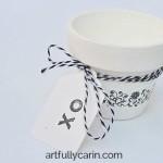 Turn terracotta pot into a cute hostess gift